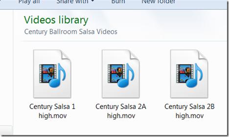 Salsa files